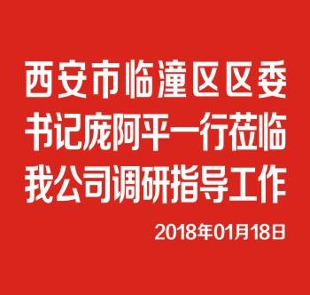 西安市臨潼區區委書記龐阿平一行莅臨我公司調研指導工作